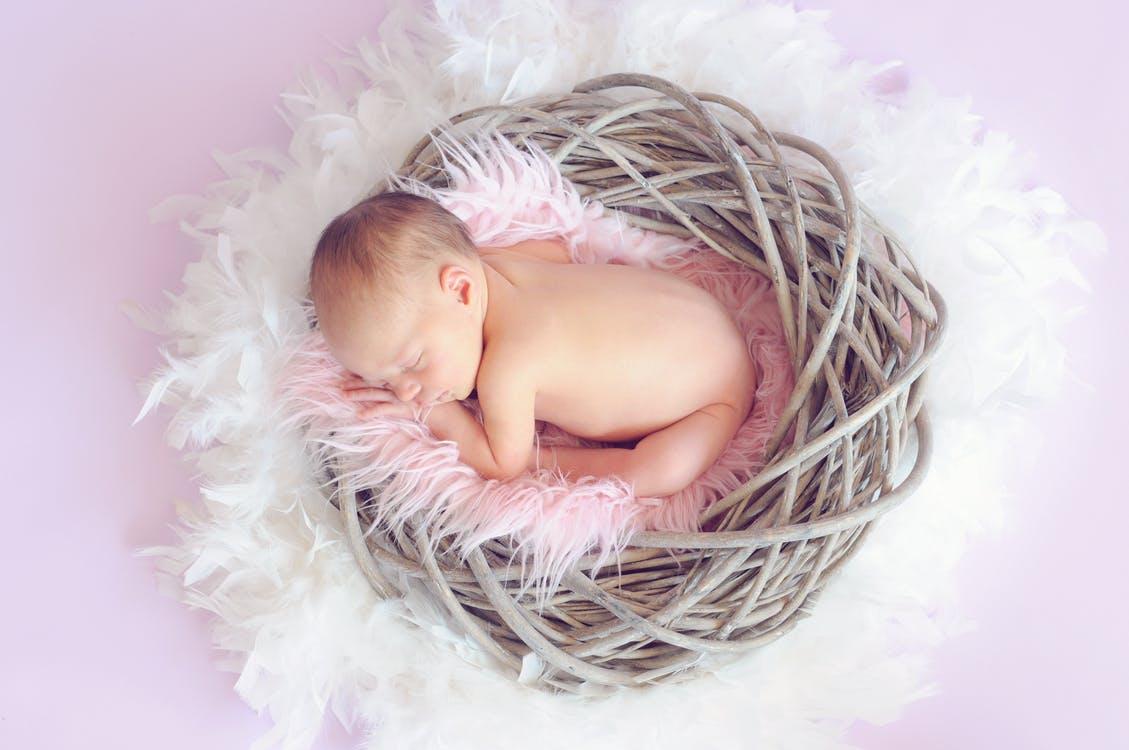 bebelusi diversificare alaptare
