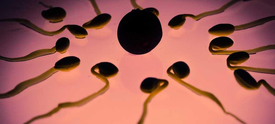 Cum se folosesc spermicide