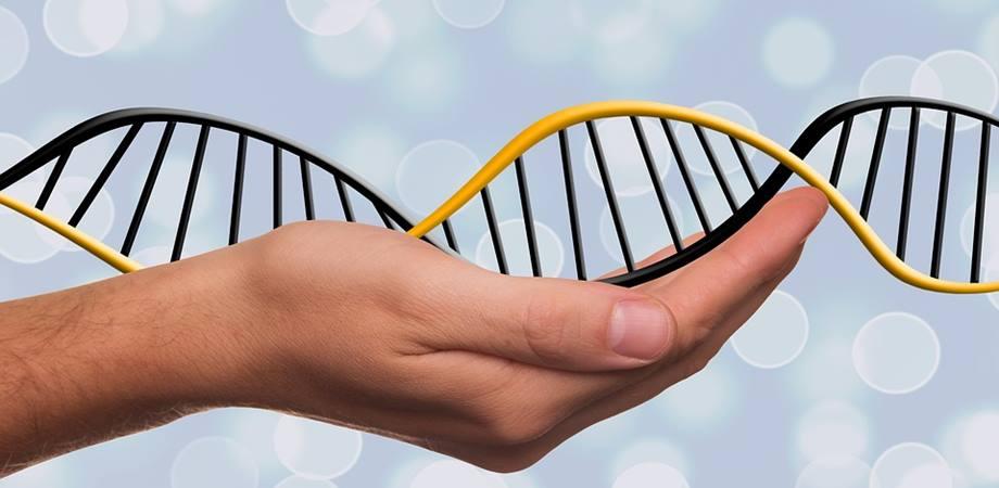 malformatii congenitale genetice