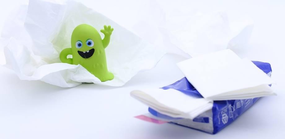 cauze febra in sarcina