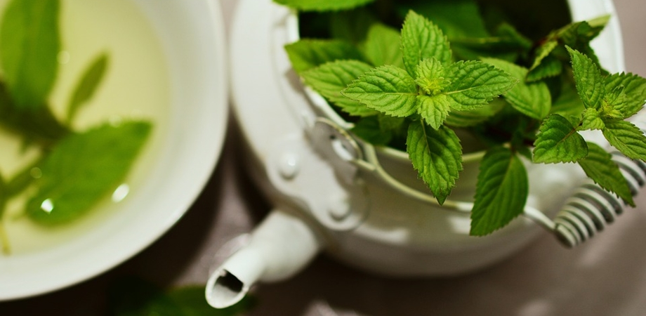 frunzele de menta ajută la scăderea în greutate