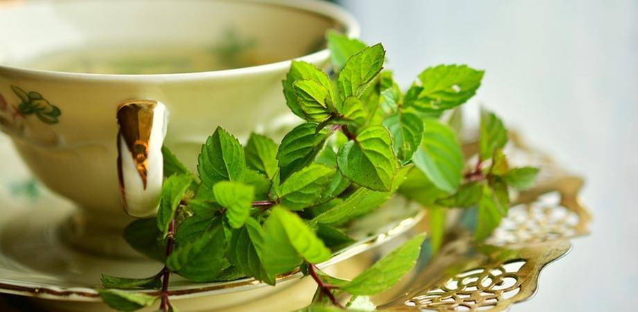 ceaiul de menta