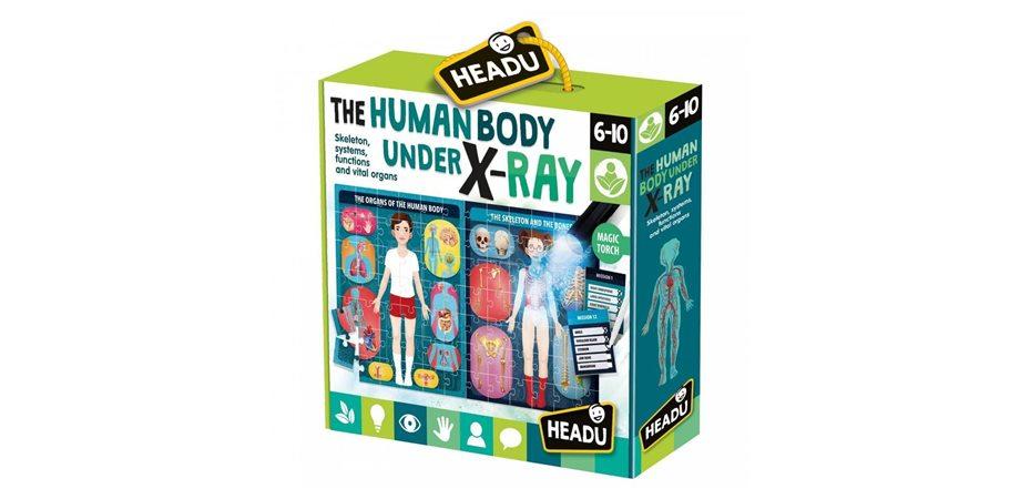 Stem - Puzzle radiografia corpului uman