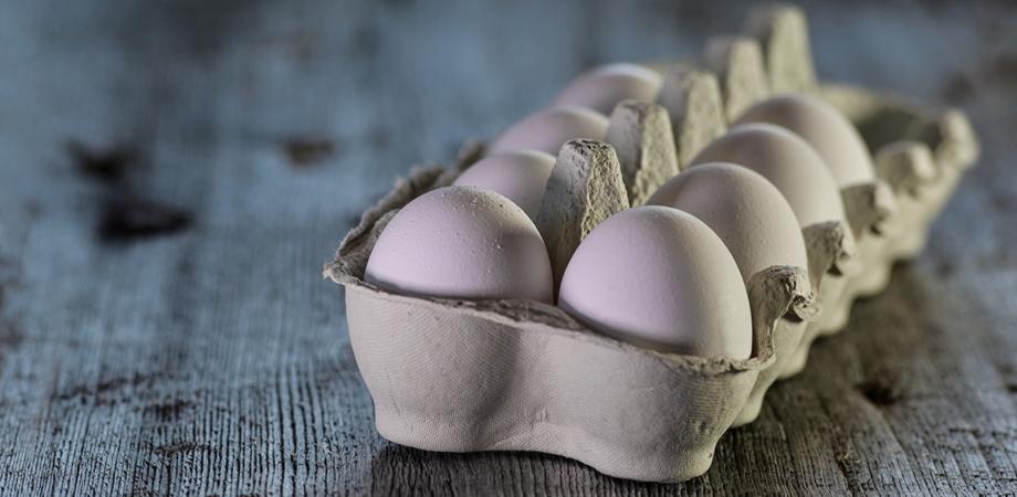 ce este alergia la oua