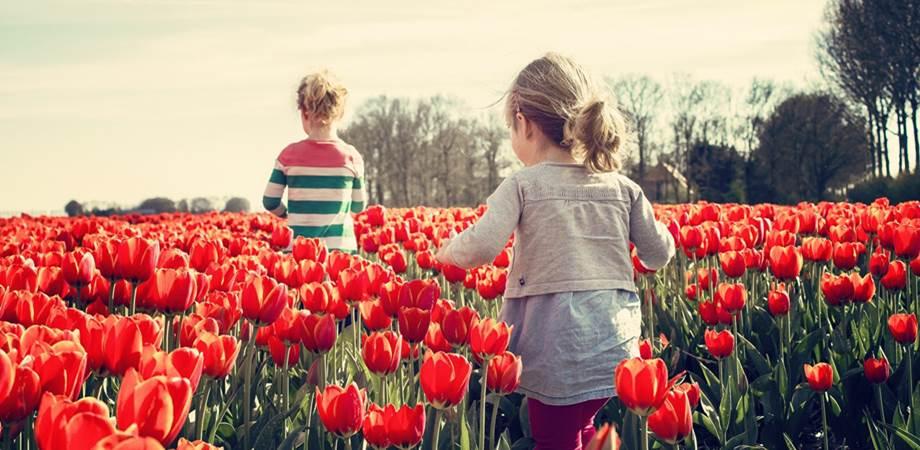 activitati de primavara pentru cei mici