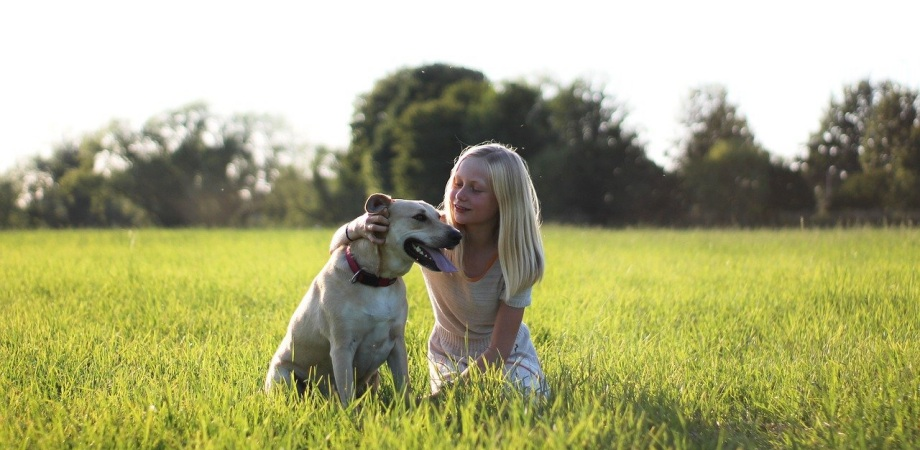 animale de companie la copii